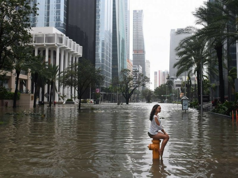 Steve Pomeranz, Irma's Economic Impact